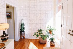 How to Create a Lasting Impression in Your Entryway